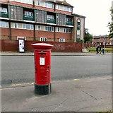SJ8297 : Edward VII Postbox (M16 146D) by Gerald England