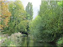TQ3296 : The New River (old course) - southern end of the Enfield Loop (2) by Mike Quinn