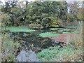 ST5955 : Litton Upper Reservoir by Dr Duncan Pepper