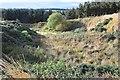 NT3855 : Disused quarry, Fala Hill by Jim Barton
