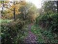 SJ8245 : Silverdale: footpath skirting allotments by Jonathan Hutchins