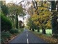 SJ8151 : Bignall End Road looking south by Jonathan Hutchins