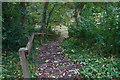 SJ8962 : A lot of steps by Anthony O'Neil