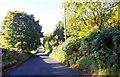 NO3538 : Tealing Road by Stanley Howe