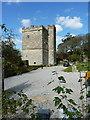 SW5828 : Pengersick Castle by Richard Law