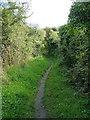 SW5828 : Bridleway between Pengersick and Trevurvas by Richard Law