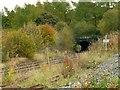 SK0579 : Railway tunnel near Chapel-en-le-Frith by Alan Murray-Rust