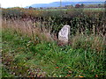 SJ2205 : Old milestone south of Welshpool by Jaggery