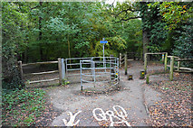 TQ4468 : Paths and cycle routes in Jubilee Country Park by Bill Boaden