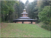 NS2209 : Pagoda, Culzean Country Park by G Laird