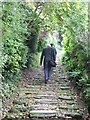 ST9151 : Looking up Church Steps, Bratton by Penny Mayes