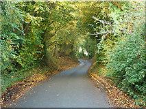 TL8627 : Tey Road by Robin Webster