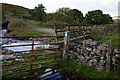 NY7638 : South Tyne Trail at Clargill Burn by Ian S