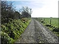 ST6302 : Up Sydling, bridleway by Mike Faherty