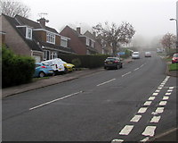 ST3090 : Foggy view up Rowan Way, Malpas, Newport by Jaggery
