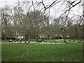 TQ2880 : Green Park by Hugh Venables