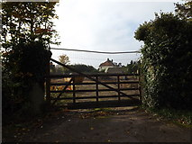 TM3669 : Entrance to The Croft by Adrian Cable