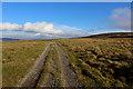 SD8383 : Pennine Way on Heator Pasture by Chris Heaton