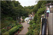 SZ5881 : Shanklin Chine from the Chine Inn, Shanklin by Ian S