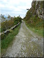 NM8944 : Track to Port Appin by Peter Bond
