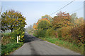 TL3257 : An autumn morning on Caxton Road by John Sutton