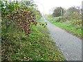 SK8771 : Autumn on route 647 by Steve  Fareham