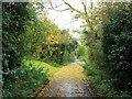 TQ5972 : Sandy Lane, Stonewood by Chris Whippet