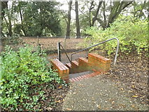 TM1645 : Steps to Bridle Way by Adrian Cable