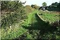 SY4393 : Smallholding near Symondsbury by Derek Harper