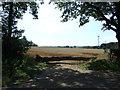 TL0035 : Field entrance near Steppingley Copse by JThomas