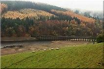 SK1789 : Ladybower aqueduct by Steve  Fareham