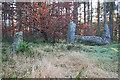 NJ6119 : Cothiemuir Wood Recumbent Stone Circle (12) by Anne Burgess