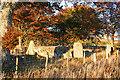 NJ5919 : Old Keig Recumbent Stone Circle (8) by Anne Burgess