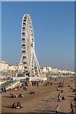 TQ3103 : The Beach from the Pier, Brighton, East Sussex by Christine Matthews