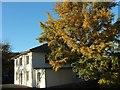 SY4693 : Allington Villa, Bridport by Derek Harper