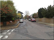 TM1645 : Gainsborough Road, Ipswich by Adrian Cable