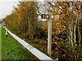 SO0291 : Severn Way signpost, Caersws by Jaggery
