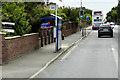 TG2411 : Bus Stop on Wroxham Road by David Dixon