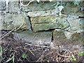 SJ5405 : Damaged OS benchmark - Big Wood, roadside drain by Richard Law