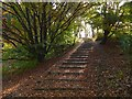 NS3978 : Steps on the Strathleven Walk by Lairich Rig