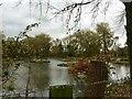 SJ7260 : Fishing pool opposite Watch Lane Flash by Jonathan Hutchins