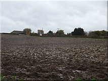 TM3669 : Farmland off Pump House Lane by Adrian Cable