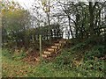 SJ7258 : Footpath steps off Clay Lane by Jonathan Hutchins