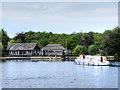 TG3117 : Sheerwater, Wroxham Broad by David Dixon