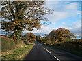 NZ1620 : B6279 near Ingleton Grange by JThomas