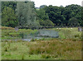 SN6761 : Riverside pasture north-west of Tregaron, Ceredigion by Roger  Kidd