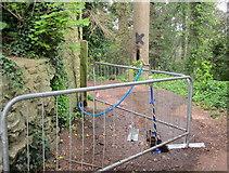 SX9065 : Jury rig tap, Chapel Hill Pleasure Grounds by Derek Harper
