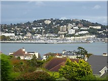 SX9163 : Torquay Marina and harbour area by David Smith