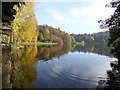 ST7734 : Stourhead Gardens from the Grotto by Chris Allen