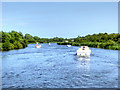 TG3217 : River Bure, Hoveton Marshes by David Dixon